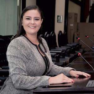 Foto Diputada Ana Lucía Delgado