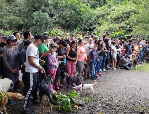 San Rafael inaugura su primer parque y sendero para perros